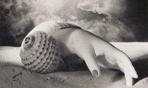 Dora Maar: Sin título, 1934.
